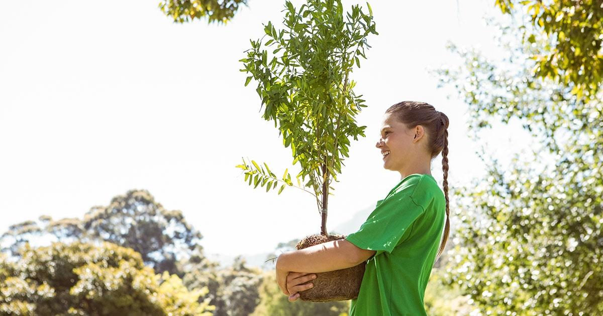 Cómo un curso de gestión ambiental puede mejorar nuestra calidad de vida