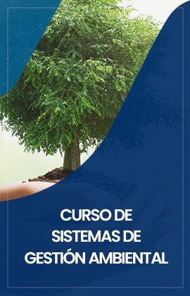 Curso de Sistemas de Gestión Ambiental